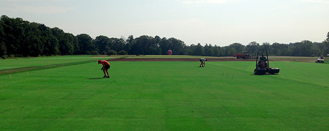 ANOTHER PICTURE OF THE RUTGERS TURFGRASS RESEARCH FARM