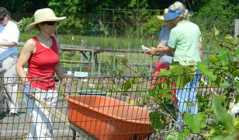 Master Gardener Program Announces New Classes for 2016-2017