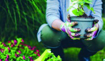 rutgers home gardeners school 2018