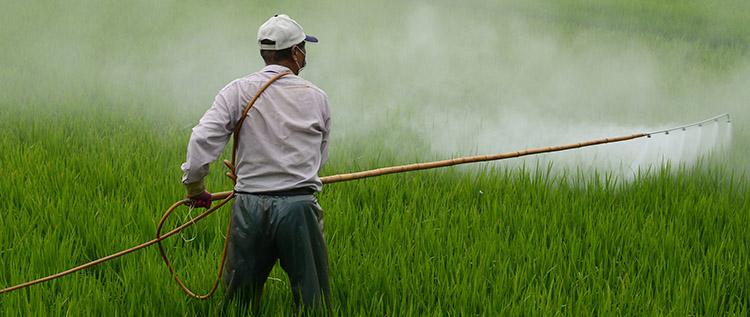 pesticide applicator exam in nj